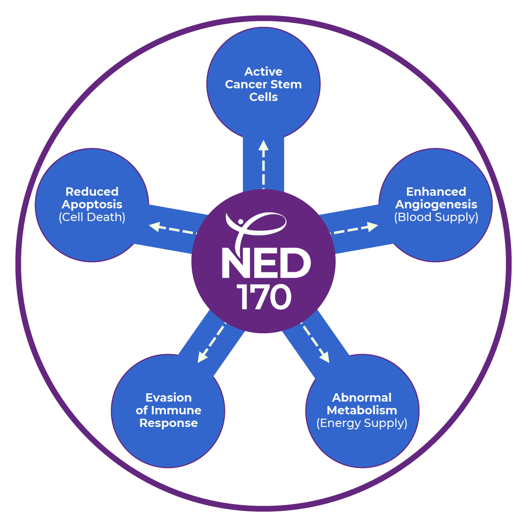 Our Approach Ned Biosystems